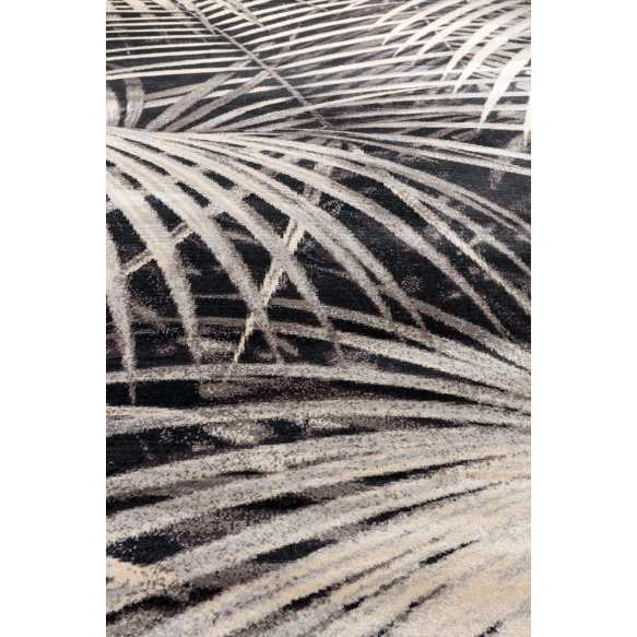 Carpet Palm 200X300 By Night