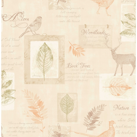 wallpaper Woodland collage