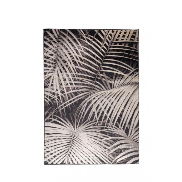 Carpet Palm 200X300 By Night