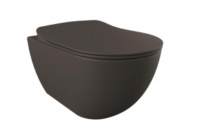 rimfree wall hung toilet Free,mat anthracite, without seat