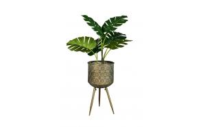 taimealus Botanique L