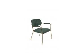 Lounge Chair Jolien Arm Gold/Dark Green