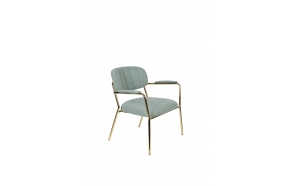 Lounge Chair Jolien Arm Gold/Light Green