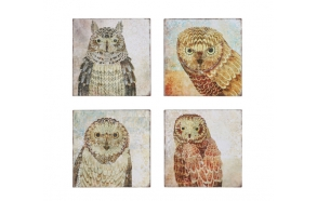 "12"" Square Tin Wall Plaque w/ Owl, 4 Styles"