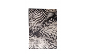 Carpet Palm 170X240 By Night
