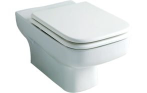 WALLHUNG CLOSET WITH HOLE WHITE, NO SEAT
