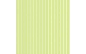 Hoopla Pin Stripe Sidewall Green