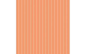 Hoopla Pin Stripe Sidewall Orange