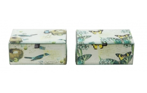 "5-1/4""L Glass Box w/ Bird Decal, 2 Styles"