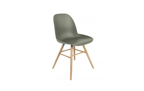 Chair Albert Kuip Green