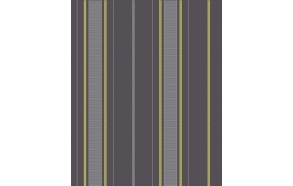 Accents Stripe Lime/Grey