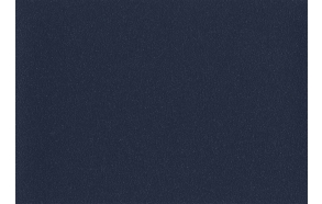 Altro Aquarius, Newt