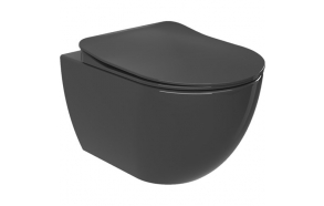 wall hung toilet Free, mat anthracite, without seat