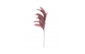 kunstlill I Will Never Fade Old Pink L