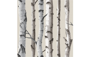 Birch Tree Sidewall , Natural