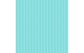 Hoopla Pin Stripe Sidewall Turquoise