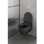 seina wc pott Pura, Swirlflush, matt must