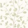wallpaper Woodland Trees