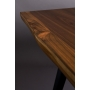 Table Alagon 220X90