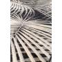 Carpet Palm 170X240 By Night
